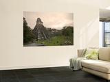 Tikal Pyramid Ruins, Guatemala Wall Mural by Michele Falzone