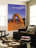 Delicate Arch, Arches National Park, Utah, USA Wall Mural by Gavin Hellier