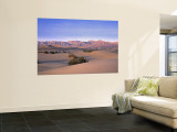 Stovepipe Wells, Death Valley, California, USA Wall Mural by Walter Bibikow