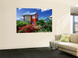 Providence Island, Bahamas, Caribbean Wall Mural by Peter Adams