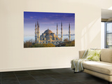 Blue Mosque, Istanbul, Turkey Wall Mural by Peter Adams