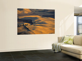Wheat Fields, Palouse Region, Washington State, USA Wall Mural by Walter Bibikow