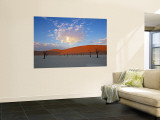 Red dunes and dead acacia tree, Dead Vlei, Namib-Naukluft-Sossusvlei, Namibia Wall Mural by Gavin Hellier