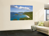 Caribbean, US Virgin Islands, St. John, Beach at Trunk Bay Wall Mural by Gavin Hellier