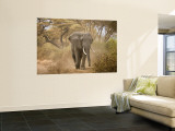 Loxodonta Africana, Lake Manyara National Park, Tanzania Wandgemälde von Ivan Vdovin