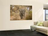 Loxodonta Africana, Lake Manyara National Park, Tanzania Wall Mural by Ivan Vdovin