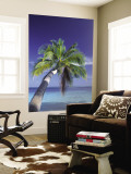 Tropical Beach at Maldives, Indian Ocean Reproduction murale géante par Jon Arnold