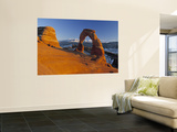Delicate Arch, Arches Np, Utah, USA Wall Mural by Gavin Hellier