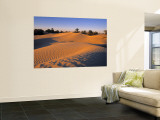 Sahara Desert, Douz,Tunisia Wall Mural by Jon Arnold