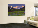 Nanga Parbat, from Fairy Meadows, Diamir District, Pakistan Wall Mural by Michele Falzone