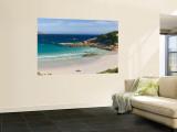 Twilight Beach, Esperance, Western Australia, Australia Wall Mural by Michele Falzone