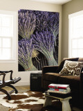 Lavender, Provence, France Wall Mural by Walter Bibikow