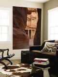 The Treasury, Petra, Jordan Wall Mural by Michele Falzone