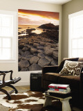 Giants Causeway, Northern Ireland Wall Mural by Doug Pearson