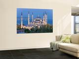 Blue Mosque, Sultanahmet, Bosphorus, Istanbul, Turkey Wall Mural by Gavin Hellier