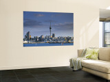 Skyline of Auckland, North Island, New Zealand Wall Mural by Doug Pearson