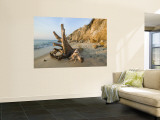 Aquinnah, Gay Head, Martha's Vineyard, Massachusetts, USA Wall Mural by Walter Bibikow