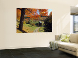 Fall Foliage, Vermont, USA Wall Mural by Gavin Hellier