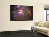 Orion Nebula Wall Mural