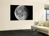 Waning Moon Wall Mural