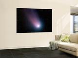 Comet C/2001 Q4 (NEAT) Wall Mural
