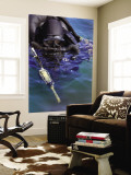 Navy Seal Combat Swimmer Wall Mural