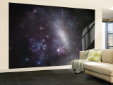 Large Magellanic Cloud Wall Mural  Large