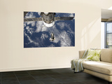Space Shuttle Endeavour Backdropped by a Blue and White Earth Wall Mural