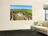 Mount Saint Helens Wall Mural
