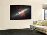 May 2006, Image of the Magnificent Starburst Galaxy, Messier 82 (M82) Wall Mural