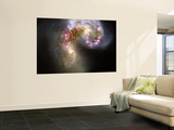 The Antennae Galaxies Wall Mural