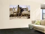 US Air Force Military Working Dog Sits on a US Army M2A3 Bradley Fighting Vehicle Wall Mural