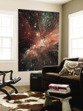 A Population of Infant Stars in the Milky Way Satellite Galaxy, the Small Magellanic Cloud Wall Mural
