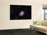 The Crab Nebula Wall Mural