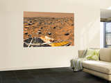 Panoramic View of Mars Wall Mural