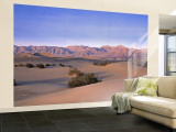 Stovepipe Wells, Death Valley, California, USA Wall Mural – Large by Walter Bibikow