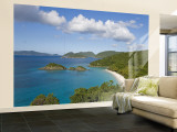 Caribbean, US Virgin Islands, St. John, Beach at Trunk Bay Wall Mural – Large par Gavin Hellier