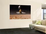 Mars Reconnaissance Orbiter Passes above Planet Mars Wall Mural