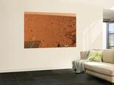 Panoramic View of Mars Wall Mural
