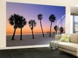 Clearwater Beach, Florida, USA Gran mural por John Coletti