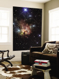 The Northern Trifid Nebula Wall Mural