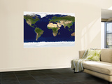 The Blue Marble: Land Surface, Ocean Color and Sea Ice Mural