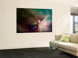Rho Ophiuchi Nebula Wall Mural