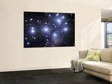 The Pleiades Wall Mural