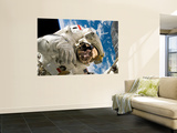 An Astronaut Mission Specialist Participates in the Mission's Extravehicular Activity Wall Mural