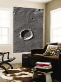 The Largest Number of Gullies on Mars Occur on the Walls of Southern Hemisphere Craters Wall Mural