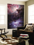 The Sword of Orion Premium Wall Mural