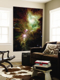 Christmas Tree Cluster Wall Mural