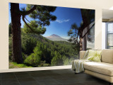 Mt. Teide, Tenerife, Canary Islands, Spain Wall Mural – Large by Alan Copson