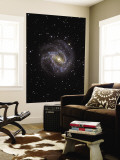 The Southern Pinwheel Galaxy Wall Mural